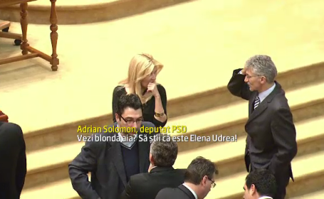Elena Udrea proteste opozitie