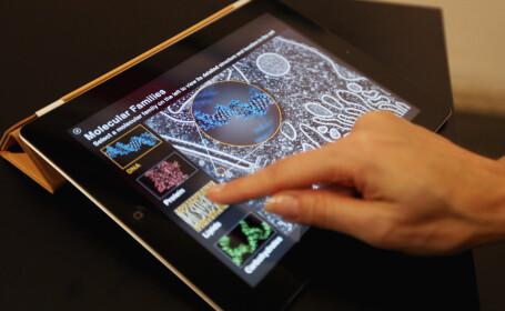 iPad 3 va revolutiona IT-ul. Cele mai credibile zvonuri despre noul produs marca Apple