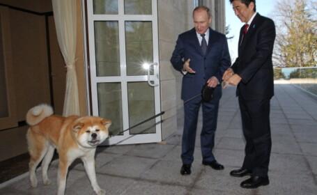 Vladimir Putin si-a adus cainele la Jocurile de la Soci. Patrupedul a fost controlat cu greu in fata fotografilor
