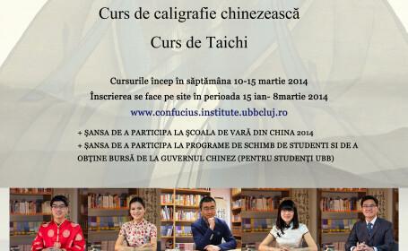 Cursuri de limba chineza, de caligrafie si de Taichi la UBB, Cluj-Napoca