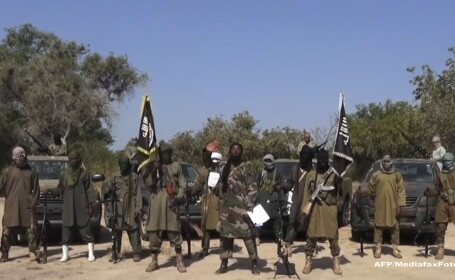 SUA anunta detasarea a 300 de militari in Camerun. Soldatii vor lupta impotriva islamistilor gruparii Boko Haram