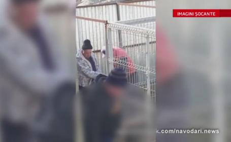 Ancheta in Navodari, in urma unei filmari de pe Facebook. Un angajat de la Biobaza, surprins in timp ce chinuia un caine