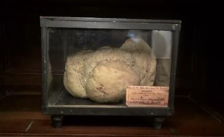 O paine coapta acum un secol, expusa la muzeul din Galati. Povestea celui mai vechi produs de panificatie din Romania