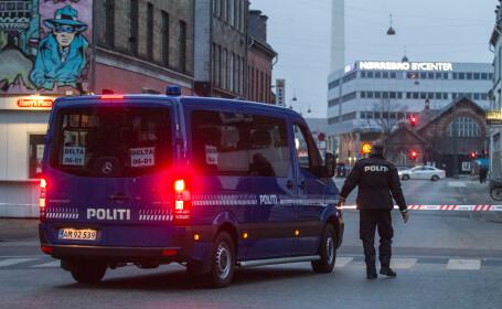 Autoritatile din Danemarca au retinut peste 20 de romani. Infractiunile pe care acestia le-ar fi comis