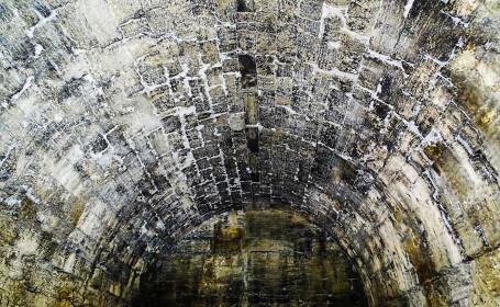 Descoperire bizara, in Turcia. Un animal mumificat a fost ascuns timp de secole intr-un beci, iar arheologii nu stiu ce este
