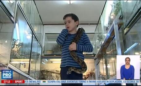 O familie are acasa 12 pisici, 2 caini, un crocodil, cateva soparle si 120 de serpi. Cum se impaca animalele intre ele. VIDEO