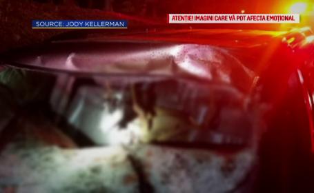 Un cuplu din SUA s-a trezit cu un cerb în mașină, în mers. Cum s-a întâmplat