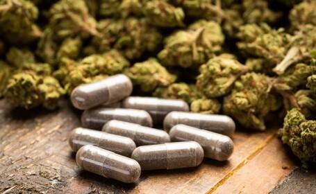 canabis medicamente