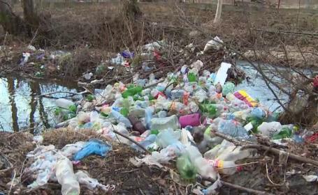 Mormane de gunoaie, colectate de localnici în Valea Motrului, după o vizită a Inspectorului PRO