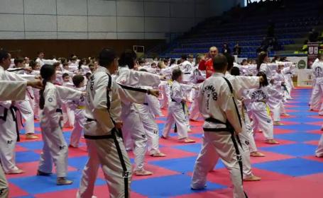 Număr record de sportivi la un stagiu de perfecționare de taekwondo, organizat în Baia Mare