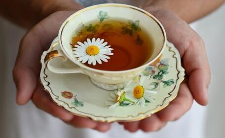 CSID Ceai