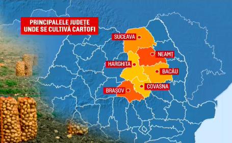 """Cum s-a """"prăjit"""" industria cartofului din România. Importăm de 50 de ori mai mulți față de acum 20 de ani"""