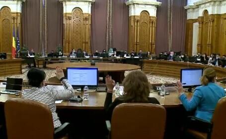 """Scandal la dezbaterea bugetului în comisii. Deputat PSD: """"Aţi luat bănuți de la copii"""""""