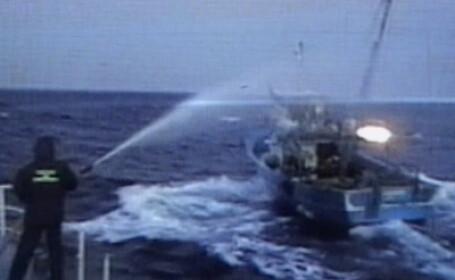 Cei cinci marinari turci acuzati de braconaj, audiati de procurori