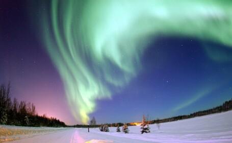 Poti vedea live, pe calculatorul tau minunea aurorelor boreale!
