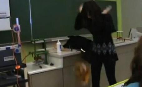 violente in clasa