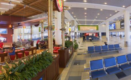 Aeroportul Domodedovo