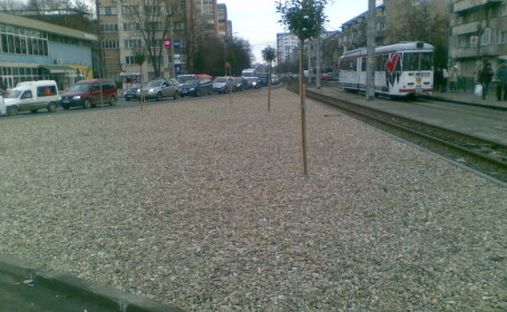 pietris arad