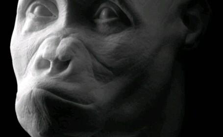 Asa aratau rudele tale indepartate. Chipurile stramosilor omului, recreate in laborator.Galerie FOTO
