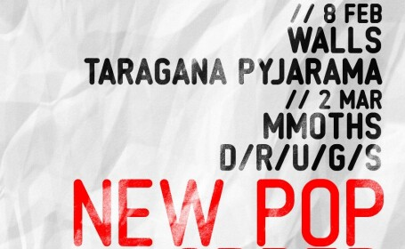 New Pop Order