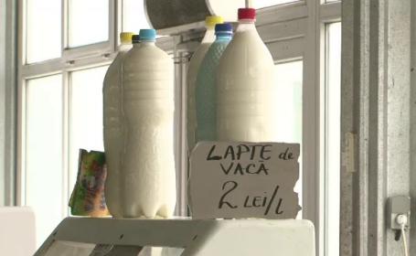 Taranii care produc lapte cu multi germeni, fortati sa fabrice branzeturi fine. De ce il arunca
