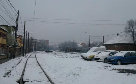 zapada Timisoara