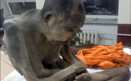 Ramasitele unui calugar, vechi de peste 200 de ani, au fost descoperite in stare perfecta. In ce pozitie sta acesta