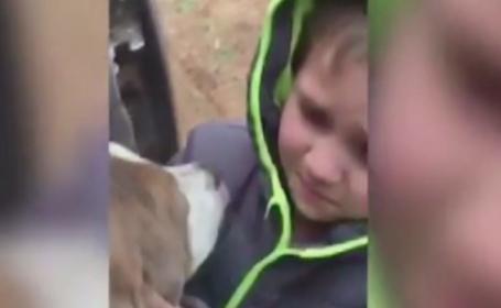 Reintalnirea emotionanta dintre un baietel si cainele care disparuse de acasa timp de o luna: \