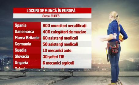 Reteaua europeana EURES ofera 2.000 de job-uri in UE pentru romani. Prioritate au tinerii intre 18 si 32 de ani