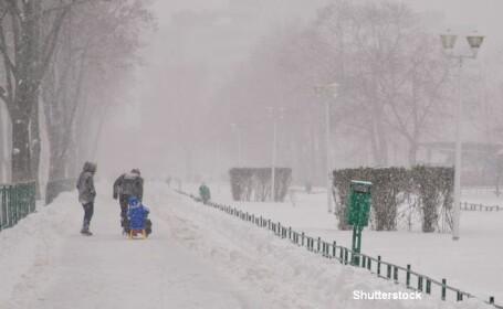 Iarna, ninsori, zapada