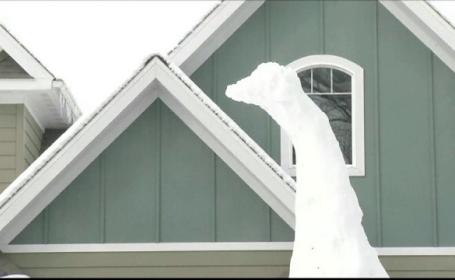 Un barbat i-a construit un dinozaur din zapada copilului sau care i-a cerut o iguana ca animal de companie. Cand o va primi