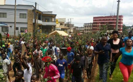 Proteste in Camerun