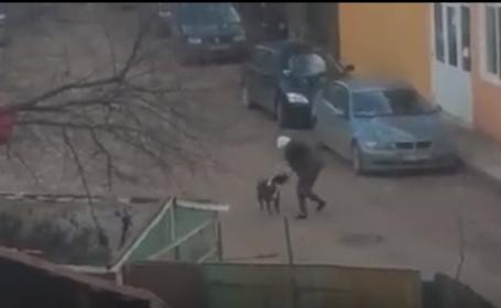 Atacat de caine