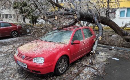 Freezing rain: un copac s-a prăbușit peste o mașină, în București. FOTO