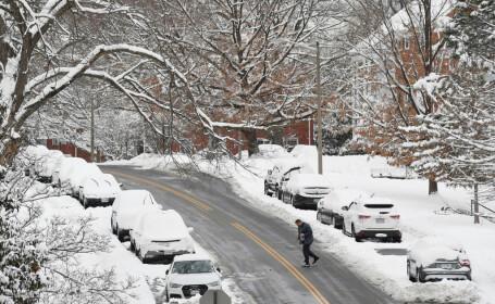 iarna USA
