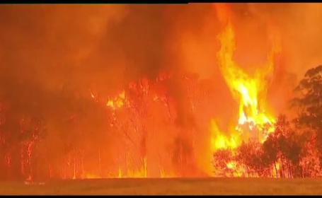 Mărturii dramatice ale românilor din iadul de foc din Australia: