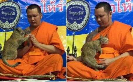 calugar budist