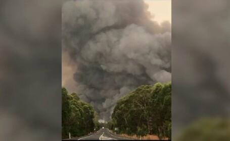 Stare de dezastru în Australia. Cum se vede infernul de foc din spațiu