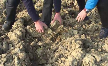 Iarnă atipică, în România. Panică printre fermieri. Pământul ar putea fi imposibil de lucrat la primăvară