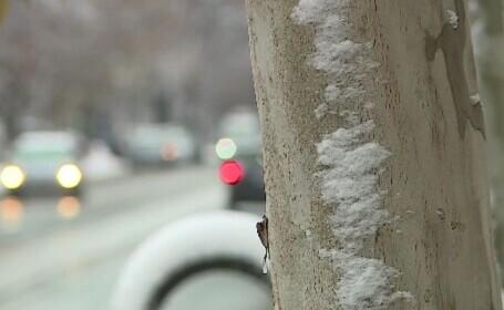 Vremea 16 ianuarie. A venit gerul peste tot în țară. Cât va coborî mercurul din termometre