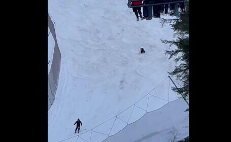 VIDEO. Momentul în care un schior este fugărit de urs pe o pârtie din Predeal