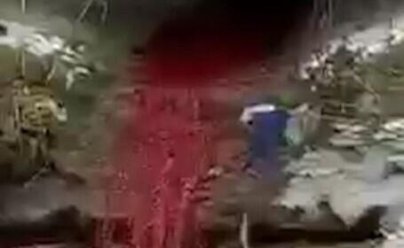 Imagini șocante cu sânge deversat în pârâul Bascov. Cum își explică patronul unei carmangerii din apropiere