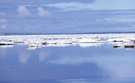 Polul Nord va ramane fara gheata in 2050!