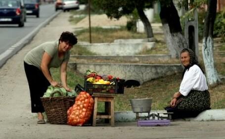 DE CE mancam scump si prost de la turci. La noi nimeni nu vrea sa munceasca pe camp, fara 40 € PE ZI