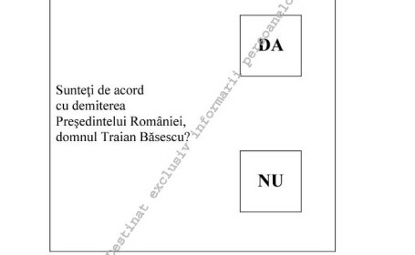 Model buletin referendum 29 iulie