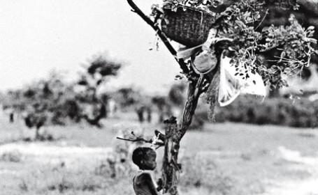 copil subnutrit, Africa, foto de Radhika Clahasani i