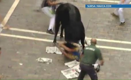barbat ranit de taur, Pamplona