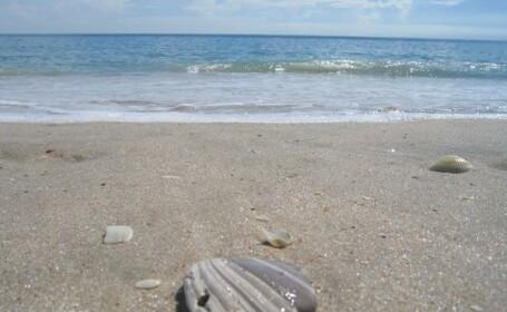 Comoara descoperita de un barbat in timp ce se plimba pe plaja. \