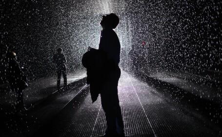 RainRoom MoMA - 2
