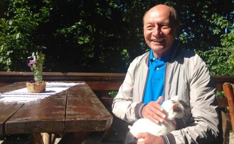Traian Basescu, pisica